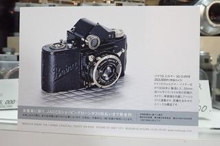 P9131006.JPG